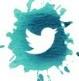Твиттер Блога Астролога